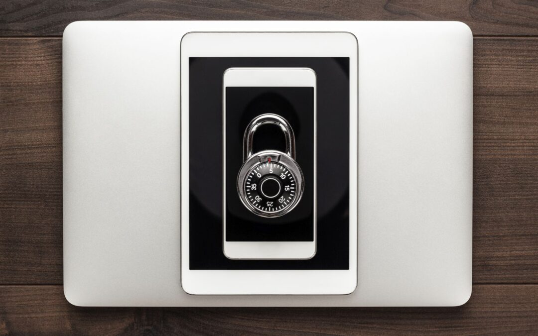 La protección de datos en las administraciones públicas y las empresas